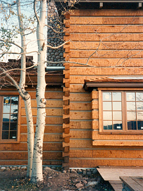 Log siding appalachian log timber homes rustic for Buy log siding